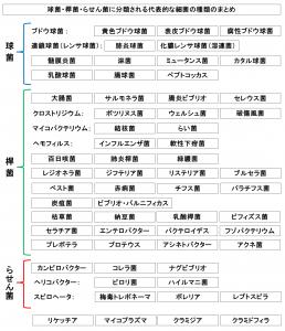 球菌・桿菌・らせん菌に分類される代表的な細菌の種類のまとめ